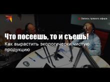 Embedded thumbnail for Что посеешь, то и съешь!